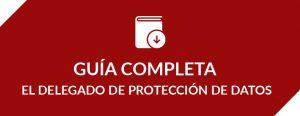 Guía completa del Delegado de Protección de Datos